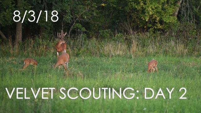 Winke's Blog: Velvet Scouting Day 2