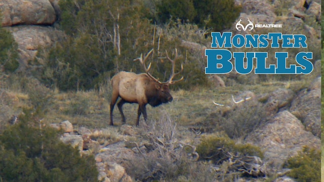 Post Rut Monster | Bill Jordan Hunts Wyoming