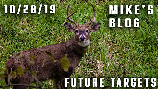 Mike's Blog: Future Targets, After Sh...