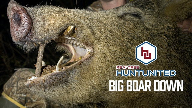 Hogzilla Is Dead   Big Boar Down in the Mississippi Backwoods   Hunt United