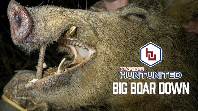 Hogzilla Is Dead | Big Boar Down in the Mississippi Backwoods | Hunt United