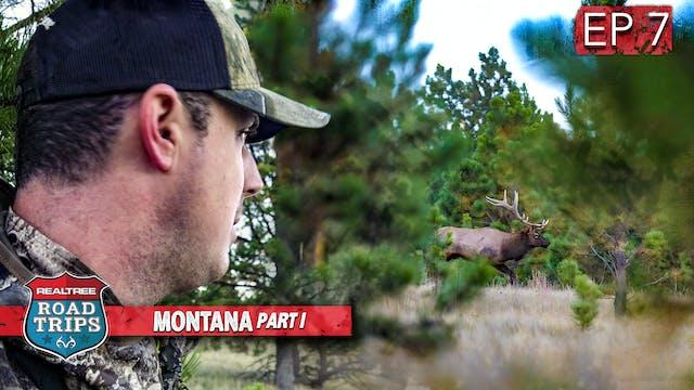 Monster Bull Bugling Madness | Montan...