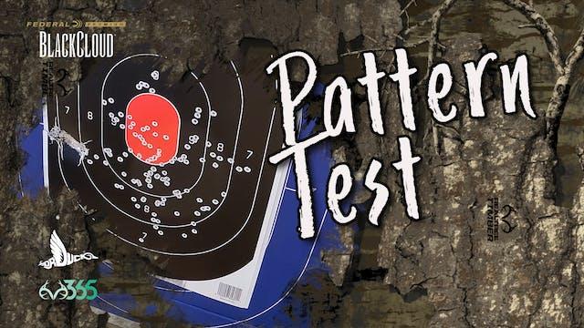 Patterning Waterfowl Shotguns for Duc...