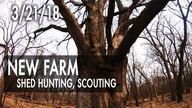 Jared's Blog: New Farm, Scouting