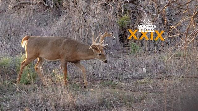 Slade Priest's Giant Southwestern Kansas Buck | Monster Bucks 2021