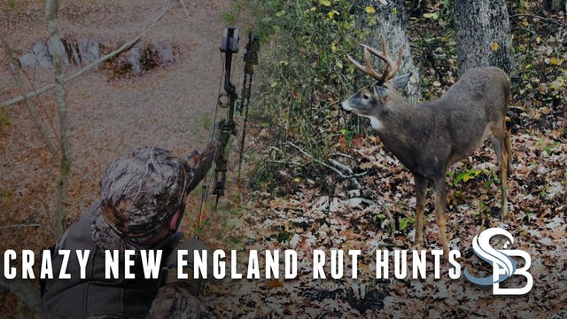 The Whitetail Rut Is Heating Up | Cla...