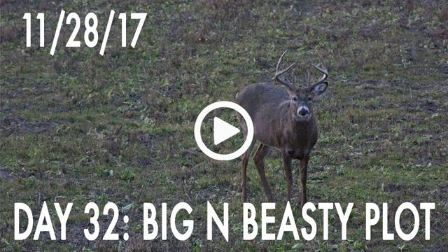 Winke Day 32: Big N Beasty Plot