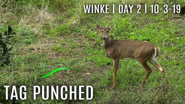 Winke Day 2: First Tag Filled