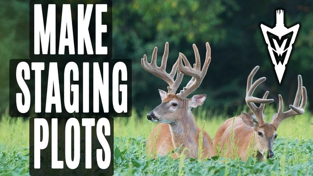 5-6-19: Targeting Bucks With Staging Plots | Midwest Whitetail