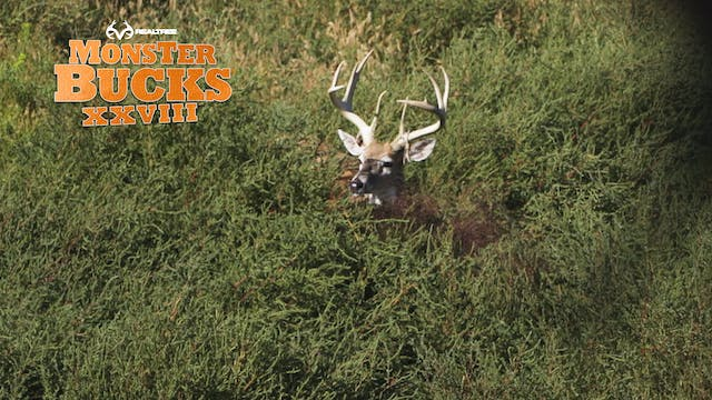 Justin Martin's Huge Wyoming Deer | R...