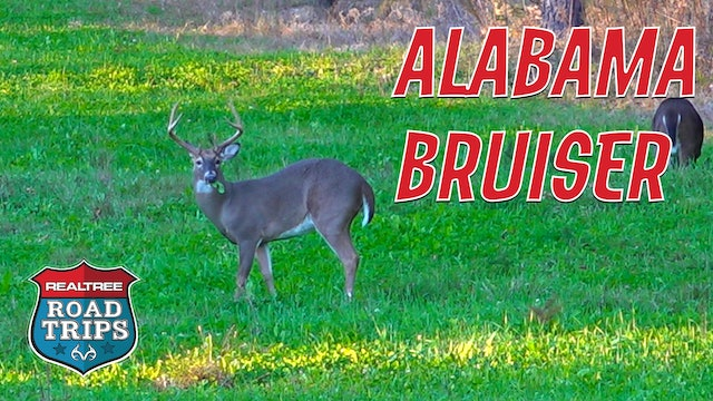 Targeting an Alabama Bruiser | Goins Fills a Deer Tag | Realtree Road Trips