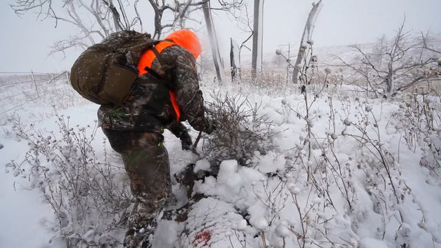 Oklahoma Snow Bucks | Behind the Seas...