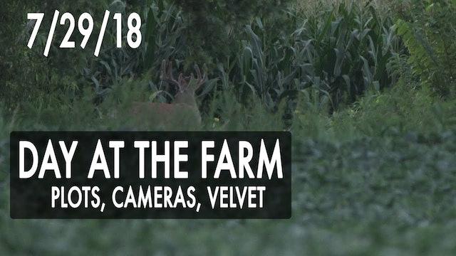 Jared's Blog: Plots, Cameras, Velvet