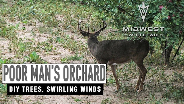 4-9-18: Grafting Apple Trees, Swirling Winds | Midwest Whitetail
