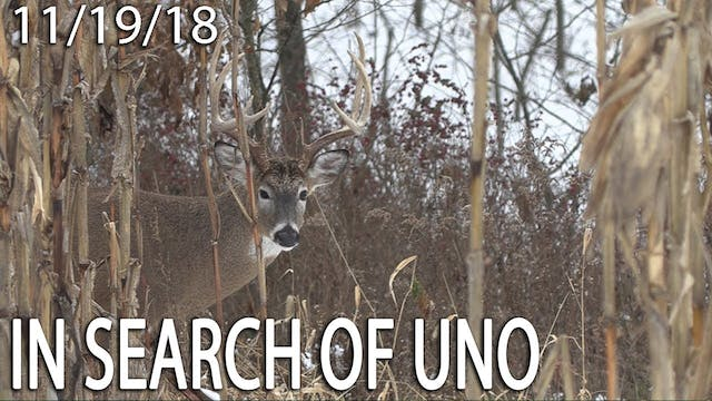 Owen's Blog: In Search of Uno