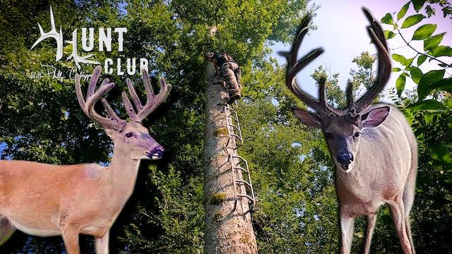 Big Bucks Are Here   Hanging a Lock-On Treestand   Hunt Club