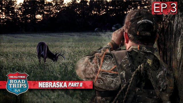 Cat and Mouse In Nebraska | First Vel...