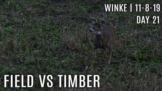 Winke Day 21: Field vs Timber, Best Rut Stands
