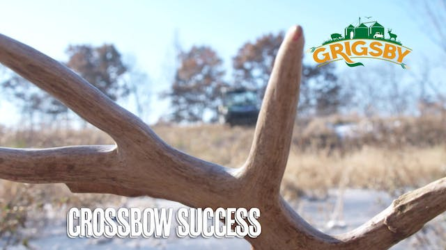 Giant Buck with a Crossbow