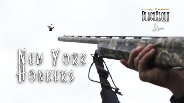 Hunting New York Honkers | Early Goose Season in the Northeast | Black Cloud