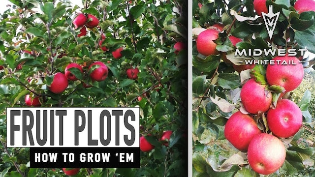 3-26-18: Fruit Plots, Pruning Apple Trees | Midwest Whitetail