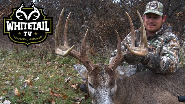 Bowhunting an Illinois Giant