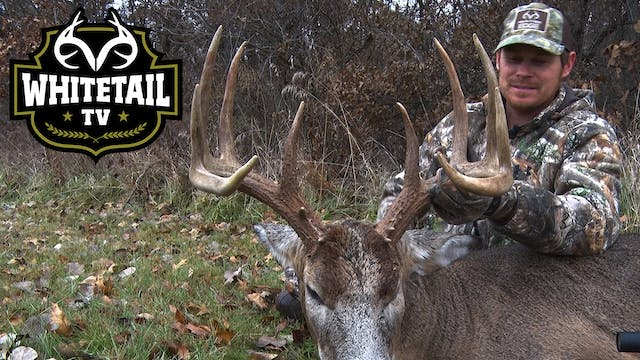 Whitetail TV S1 E13: Illinois Bowhunt...