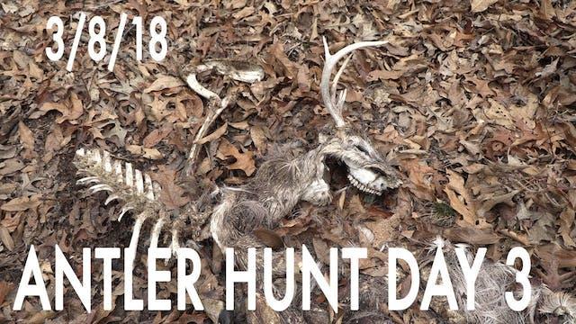 Winke's Blog: Antler Hunt Day 3