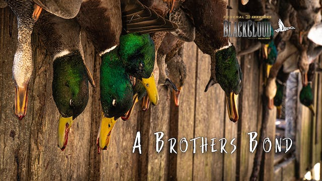 The Ultimate Duck Hunt Sweepstakes | ...