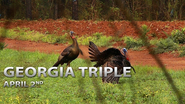 4-2-18: Georgia Triple | Spring Thunder