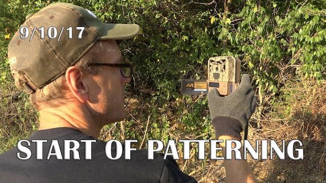 Winke's Blog: Start Of Patterning