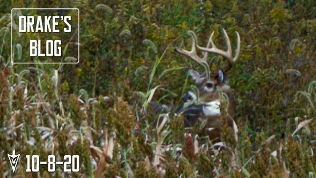 Drake's Blog: Hunting Winke's Old Far...