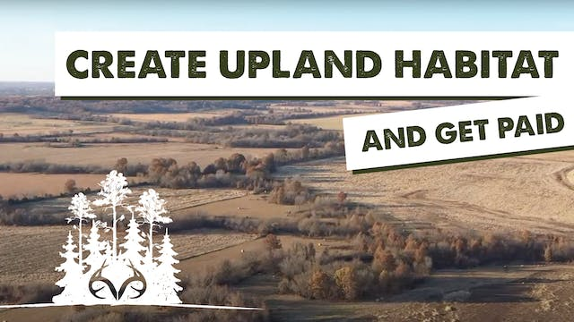 How to Get Paid for Creating Upland H...