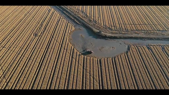 Flooding Fields for Ducks | Pumping Water for Waterfowl | DayBreak Outdoors