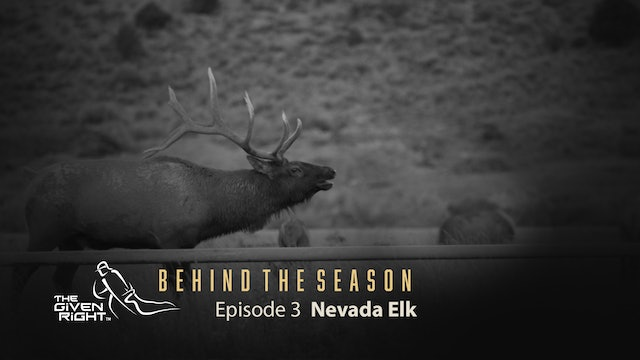 Bowhunting Rutting Nevada Elk | Behind the Season (2020) | The Given Right
