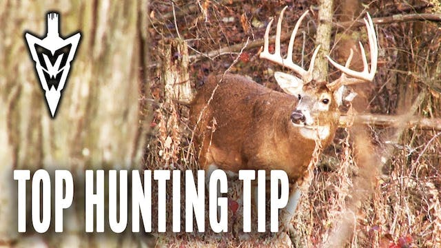 5-27-19: Deer Hunting's Cardinal Rule...