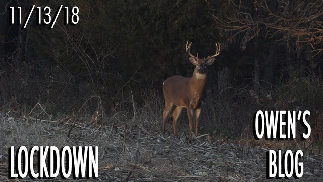 Owen's Blog: Looking for a New Buck
