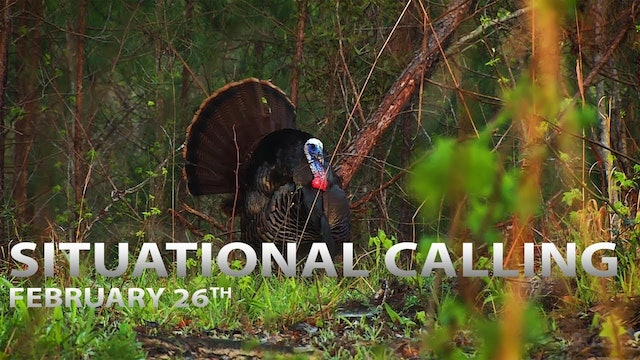 2-26-18: Situational Calling Tactics | Spring Thunder