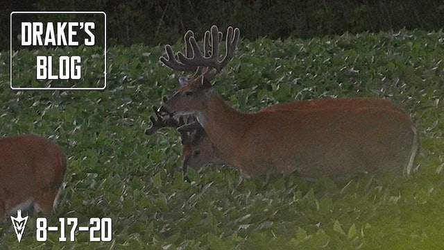Drake's Blog | 180-Inch Buck Returns | Food Plot Setup