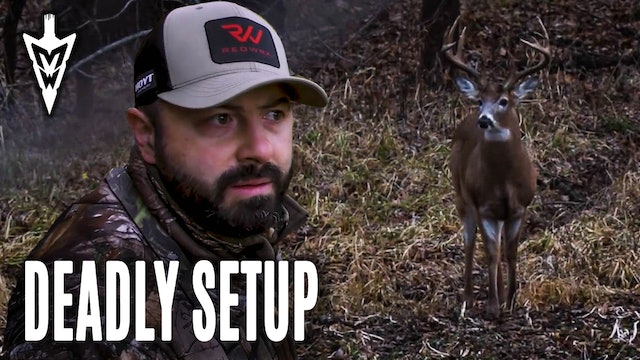 Inside Field Corner Treestand, Making Good Spots Even Better | Midwest Whitetail