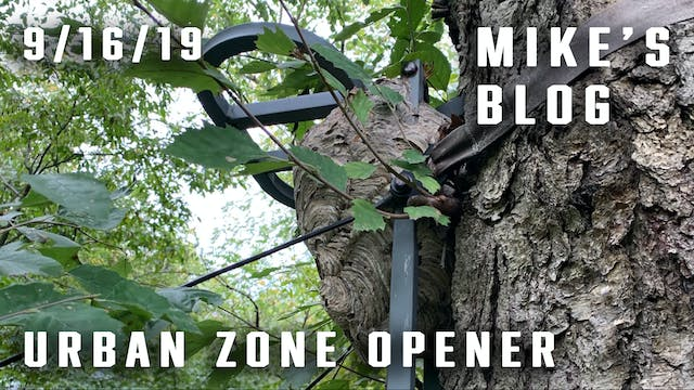 Mike's Blog: Urban Zone Opener