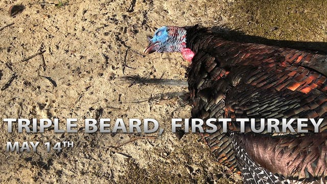 5-14-18: Triple Beard | First Turkey ...