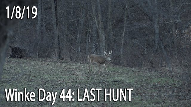 Winke Day 44: Last Hunt