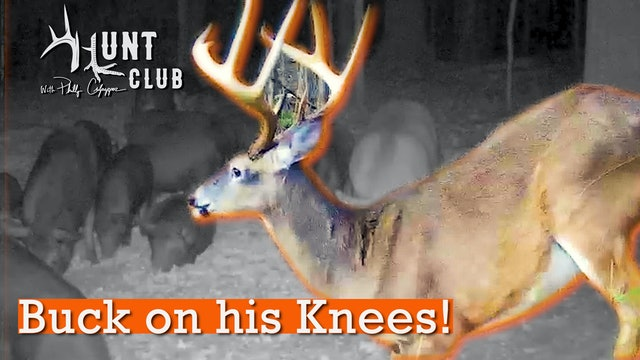 Nate Does the Unthinkable | Roger Battles 'Bama Hogs | Hunt Club