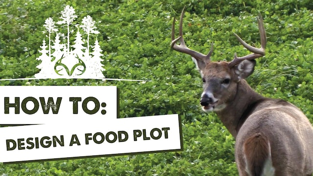 Best Food Plot Designs | Manipulating Deer Travel Routes and Patterns | Pay Dirt