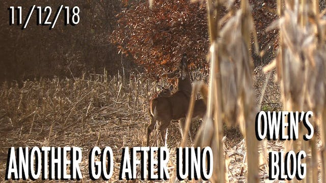 Owen's Blog: Back to Hunt Uno