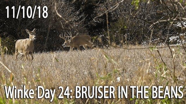 Winke Day 24: Bruiser In The Beans