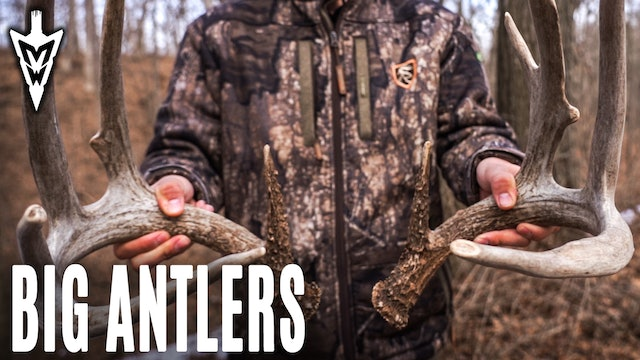 3-2-20: Big Shed Antlers, When to Snort-Wheeze | Midwest Whitetail
