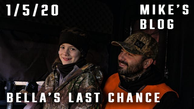 Mike's Blog: Bella's Last-Chance Deer...