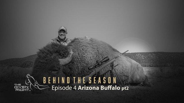 Arizona Buffalo Part 2   Behind the Season